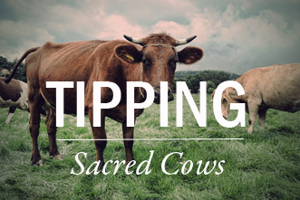 View article 10 Sacred Cows That Need To Be Tipped