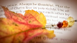 View article Thanksgiving And The Will Of God: A Preacher's Guide