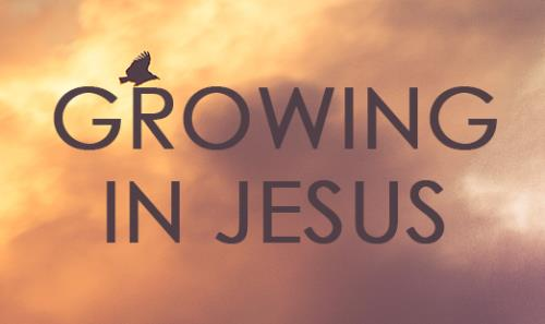 View article The Shocking Truth About Growing In Jesus