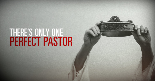 View article Only One Perfect Pastor