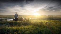 View article 3 Essentials For Pastoral Preaching