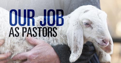 View article Shepherd God's Flock: Our Job As Pastors