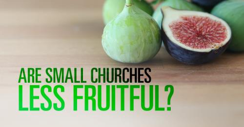 View article Are Small Churches Less Fruitful?