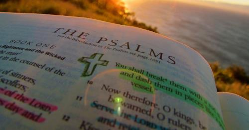 View article God Wants To Shape Your Wants: An Invitation To The Psalms