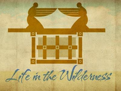 PowerPoint Template on Life In The  Wilderness