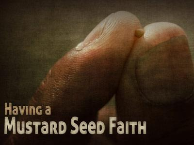 PowerPoint Template on Mustard  Seed  Faith