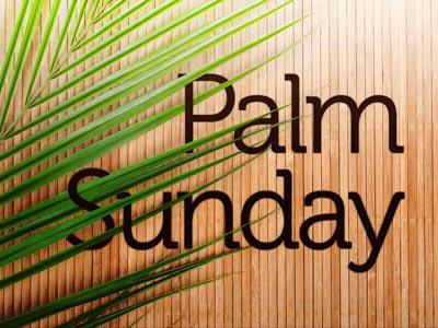 PowerPoint Template on Palm  Sunday 3