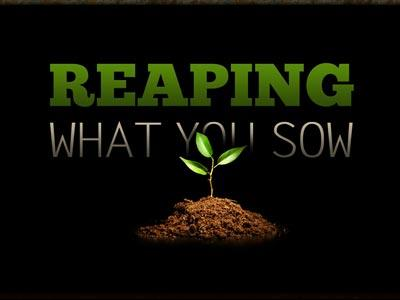 PowerPoint Template on Reaping What You Sow