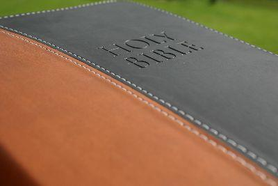 Image on Bible Leather