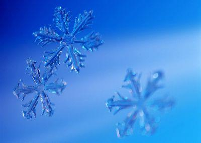 Image on Blue Snowflakes Background