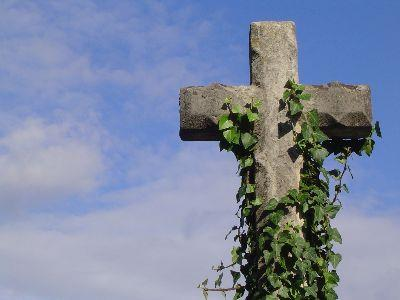 Image on Cross And Vines
