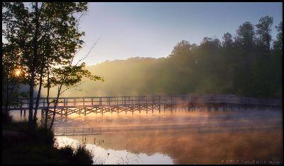 Foggy Bridge Image