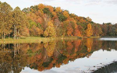 Image on Lake Autumn