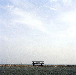 view the Image Lone Table