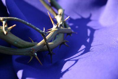 Image on Crown Of Thorns - Purple