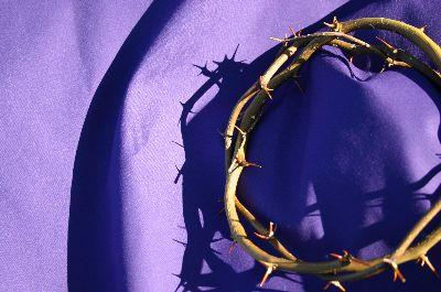 Image on Thorn Crown Purple 2