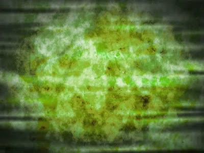 view the Motion Background Grunge Floral - Green