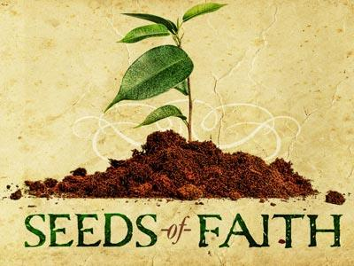 PowerPoint Template on Seeds Of Faith
