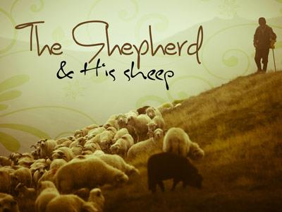 PowerPoint Template on The Shepherd