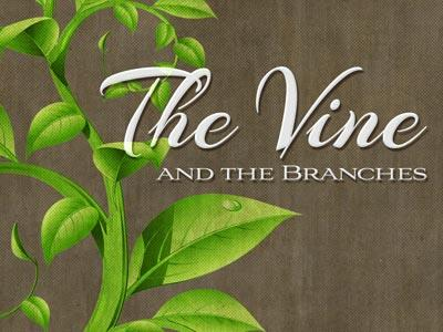 PowerPoint Template on The Vine And The Branches