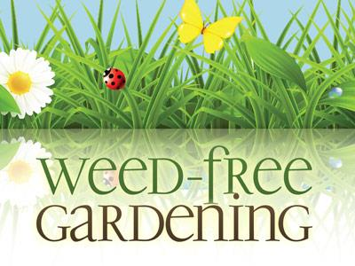 PowerPoint Template on Weed Free Gardening