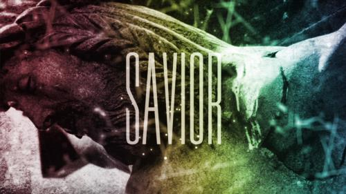 view the Video Illustration Savior