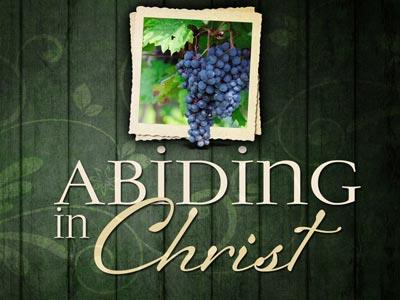 PowerPoint Template on Abide In  Christ