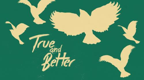 Video Illustration on True And Better
