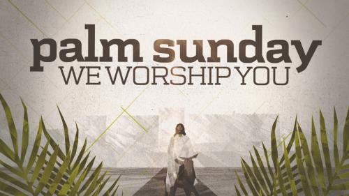 media We Worship You Worship Intro (Palm Sunday)