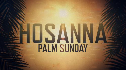 Video Illustration on Hosanna (Palm Sunday)