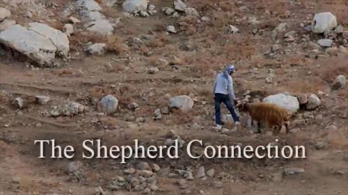 view the Video Illustration Shepherd Connection