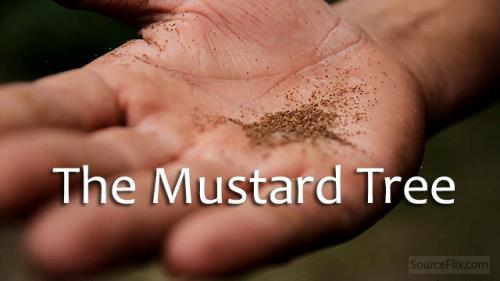 view the Video Illustration The Mustard Tree