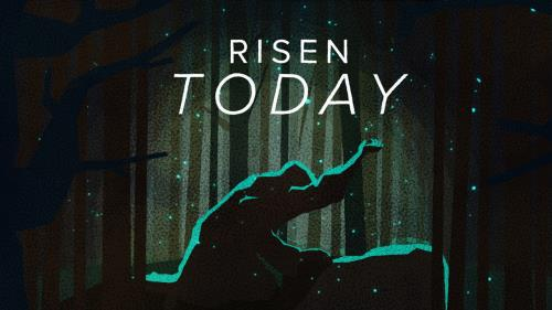 view the Video Illustration Risen Today