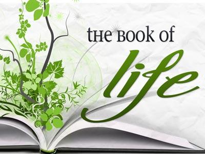 view the PowerPoint Template Book Of  Life