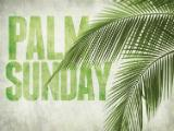PowerPoint Template on Palm Fronds