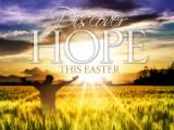 view the PowerPoint Template Discover Hope - Easter