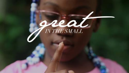 Video Illustration on Great In The Small