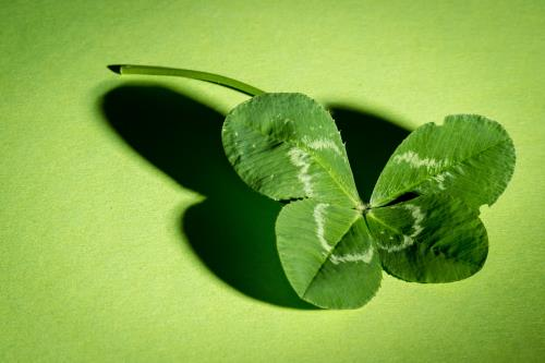 view the Image Four Leaf Clover