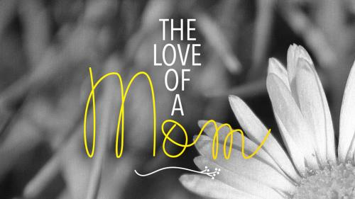 Video Illustration on The Love Of A Mom