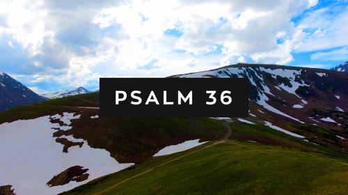 view the Video Illustration Psalm 36