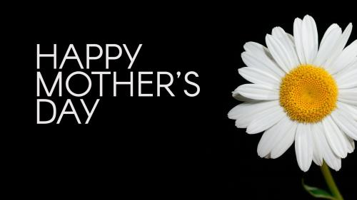 view the PowerPoint Template Flowers For Mom
