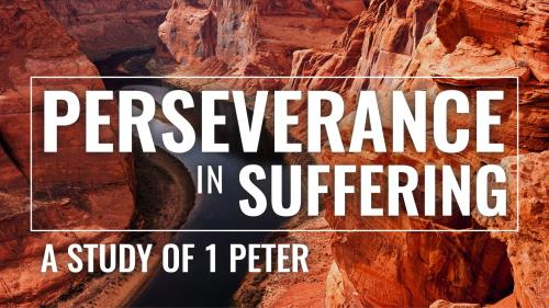 PowerPoint Template on Perseverance