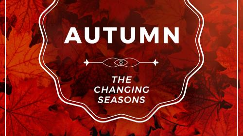 view the PowerPoint Template Autumn | The Changing Seasons