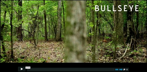 view the Video Illustration Bullseye