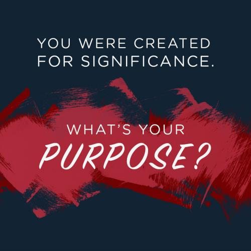 view the Image Created For Significance Week 1: What's My Purpose? (Social)