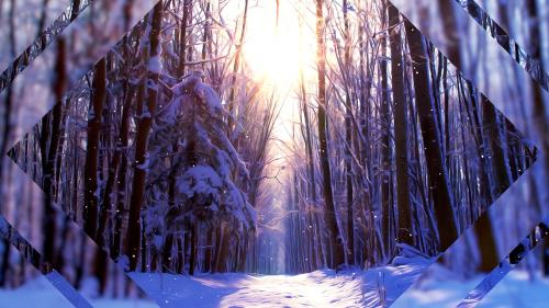 view the Motion Background Winter Scenes Three
