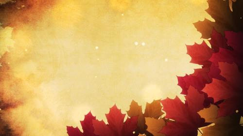 Motion Background on Autumn Leaves 01