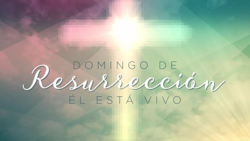 view the Motion Background Easter Daybreak Title (Spanish)