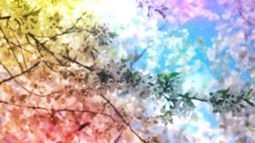 Motion Background on Mother's Day Blossoms 02