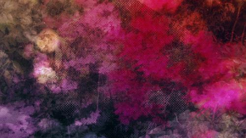 view the Motion Background Painted Flowers 02